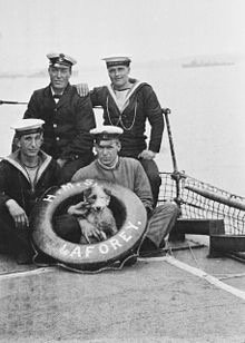 220px-HMS_Laforey_crewmen_with_dog_1915-1916_Flickr_4453382277_3aed00dc99_o